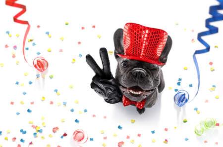 Franse buldog hond viert oudejaarsavond met eigenaar, geïsoleerd op serpentine slingers en confetti, met overwinning, vrede vingers Stockfoto - 88237274