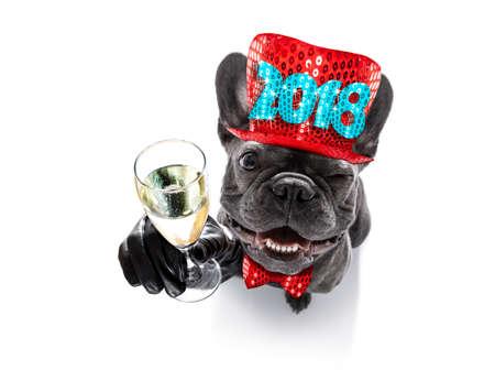 Cane del bulldog francese che celebra la vigilia di nuovi anni 2018 con il proprietario e il vetro del champagne isolati su fondo bianco, vista grandangolare Archivio Fotografico - 88237277