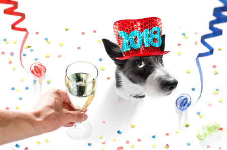 소유자와 샴페인 유리 흰색 배경, 뱀 깃발, 색종이 조각에 격리와 함께 새로운 년 이브를 축 하하는 푸들 강아지