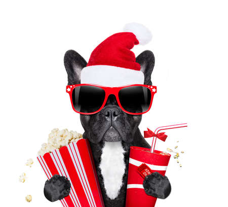 french bulldog dog ready to watch a movie at the cinema  theater,  holding coke, popcorn and ticket , on christmas holidays vacation with santa claus hat