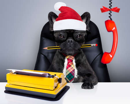 escuchar: office businessman french bulldog dog  as  boss and chef , with typewriter as a secretary,  sitting on leather chair and desk, in need for vacation, on christmas holidays with santa claus hat