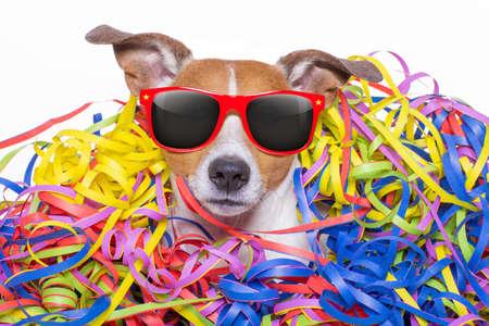 serpentinas: divertido Jack Russell perro divirtiéndose y una fiesta con serpentinas serpentinas, para cumpleaños o feliz año nuevo, con gafas de sol