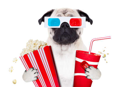 pug dog watching a movie in a cinema theater, with soda and popcorn wearing  3d glasses, isolated on white background