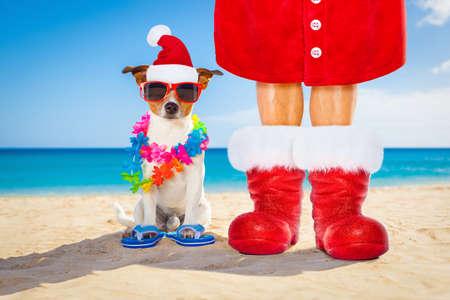 Hund und Inhaber, die nah zusammen am Strand auf Sommerweihnachtsferienfeiertagen, einen Weihnachtsmann-Hut und roten Stiefel tragend sitzen