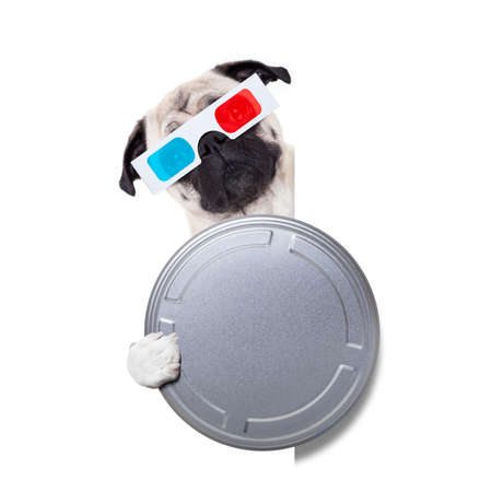 pug dog watching a  movie  with 3d glasses and a  cinema tin roll, isolated on white background behind blank empty banner or placard