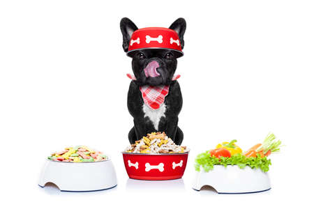 french bulldog  dog has the choice in healthy or unhealthy  food in different bowls , isolated on white background