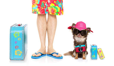 chihuahua dog and owner ready to go on summer vacation with luggage and flip flops isolated on white background