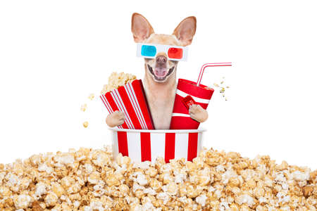 chihuahua dog going to the movies with soda and glasses and popcorn and tickets, isolated on white background