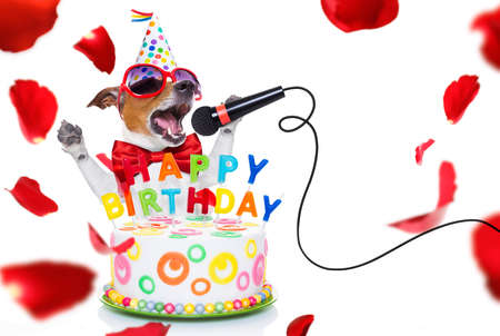 jack russell pies jako niespodzianka, śpiewający urodzinową piosenkę jak karaoke z mikrofonem, za śmiesznym ciastem, ubrany w czerwony krawat i imprezową czapkę, na białym tle