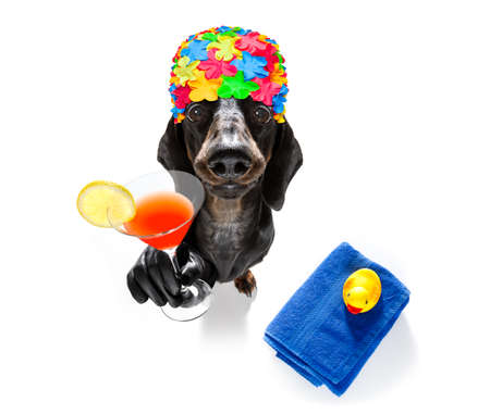 Summer vacation sausage dachshund dog with rubber duck and towel wearing bath cap Фото со стока