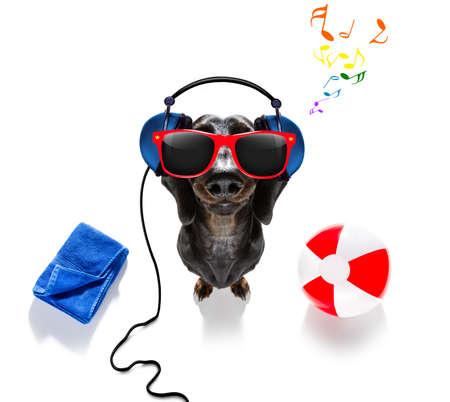Summer vacation sausage dachshund dog with beach ball and  towel wearing bath cap Фото со стока