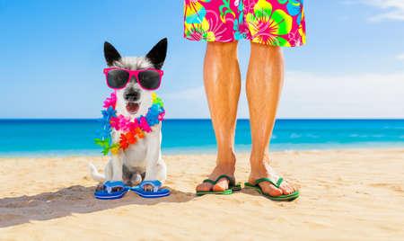 Pies i właściciel siedzą blisko siebie na plaży podczas letnich wakacji, blisko brzegu oceanu, w fantazyjnych, zabawnych okularach przeciwsłonecznych