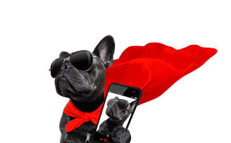 super hero french bulldog dog with  red cape and  sunglasses for justice and strenght isolated on white background taking a selfie with smartphone