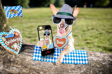 bavarian chihuahua  dog taking a selfie holding  a beer mug  outdoors by the river and mountains  , ready for the beer party celebration festival in munich