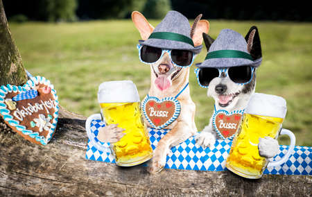 Bavarian couple of  dogs  holding  a beer mug  outdoors by the river and mountains