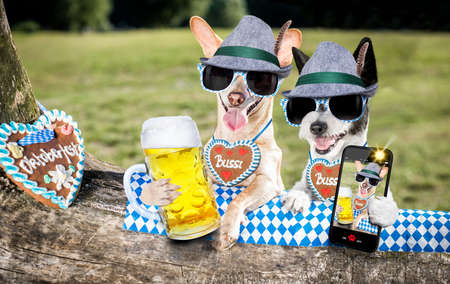 Bavarian couple of  dogs  holding  a beer mug  and taking a selfie outdoors by the river and mountains