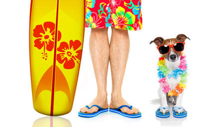 jack russell dog and owner ready to go on summer vacation  with surfboard as surfer , isolated on white background, wearing sunglasses
