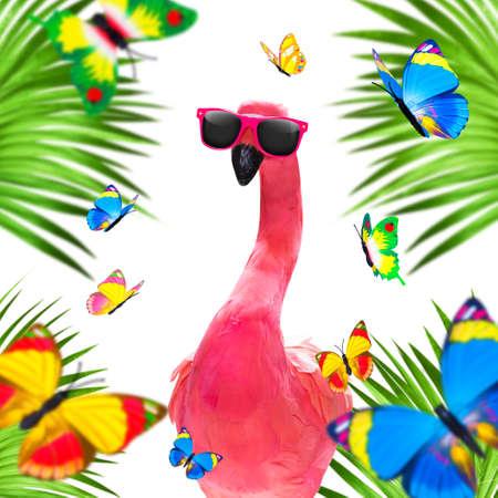 Summer paradise vacation surfer flamingo   sunglasses isolated on white