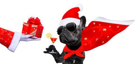 Franse bulldog met kerstmuts op wit wordt geïsoleerd Stockfoto