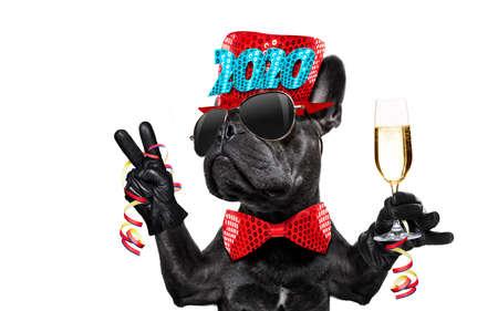 Perro celebrando la víspera de año nuevo con champán aislado sobre fondo blanco junto a una pancarta o cartel, dedos de la paz y la victoria