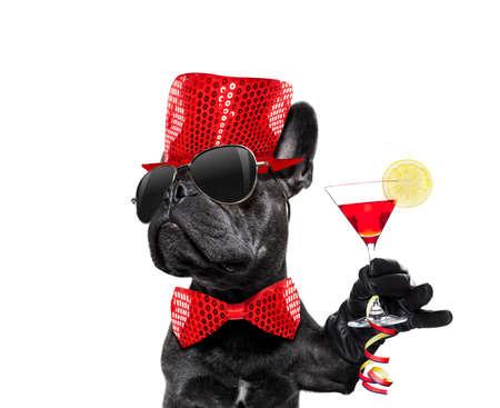 Perro celebrando la víspera de año nuevo con champán aislado en blanco