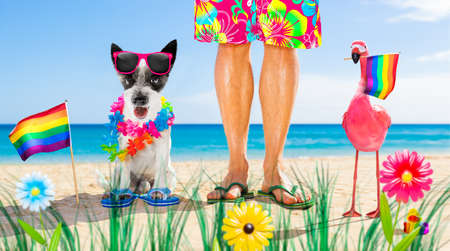 dog and owner sitting close together at the beach on summer vacation holidays, close to the ocean shore, waving rainbow lgbt gay flag