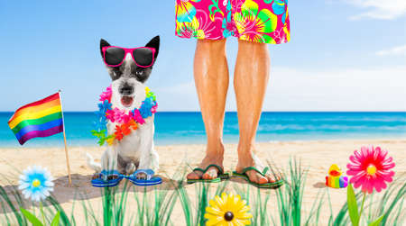 Dog and owner sitting close together at the beach on summer vacation holidays