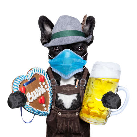 bavarian german dog with beer mug and gingerbread heart, canceled celebration festival in munich and wearing face mask