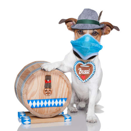 oktoberfest dog with beer barrel and gingerbread heart, canceled and wearing facemask