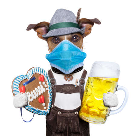 oktoberfest dog with beer mug and gingerbread heart, canceled celebration festival in munich and wearing face mask