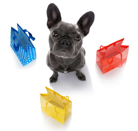 french bulldog dog with shopping bags ready for discount and sale at the mall, isolated on white background