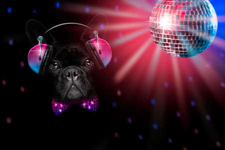 cool dj french bulldog dog listening or singing to music with headphones and mp3 player isolated on black dramatic dark background Banque d'images