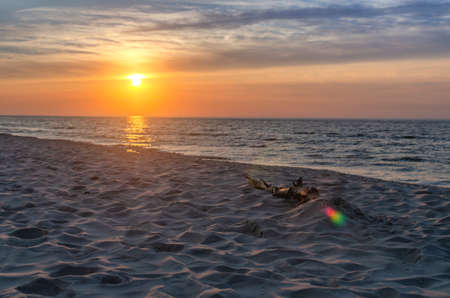 sunset over the Baltic Sea. Sandy beach. The sun's rays are reflected in the water. The branch is on the beach