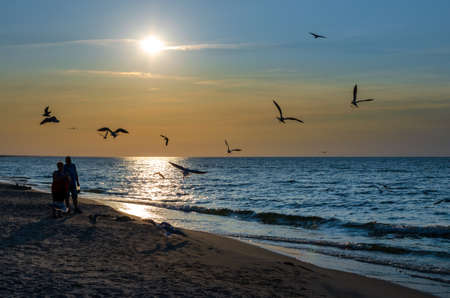 The man and the woman are feeding the seagulls. Birds flying over the sea waves. Sandy beach on the Baltic Sea and sunset. September 12, 2020. Krynica Morska beach in Poland Banque d'images