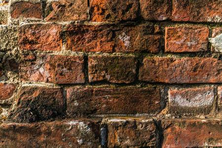 paredes de ladrillos: fragmento del viejo fondo de ladrillo