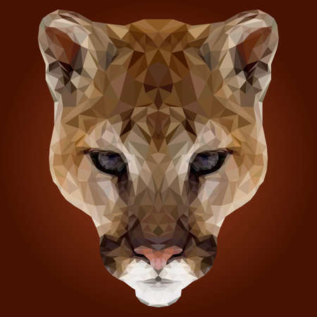 puma: Low Poly Puma Abstract Design Illustration
