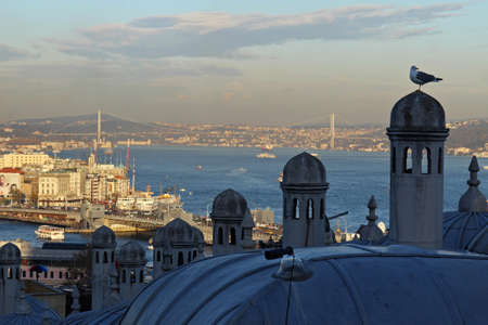 Bosphorus view from Suleymaniye Mosque in Istanbul, Turkey.