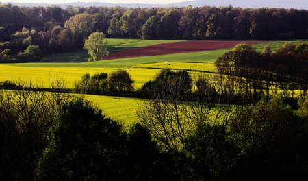 nature landscape: Green hills. Nature landscape background .
