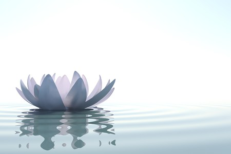 'peace of mind': Zen flower loto in water on white background