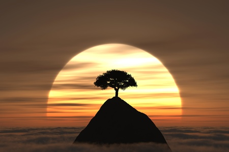 mantra: A tree on the mountain above the clouds with sunset on the background