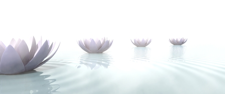 Zen path drawed with lotus flowers on the water 写真素材