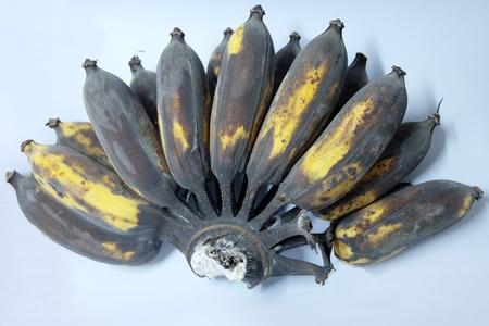 rot: close up Bananas rot Stock Photo