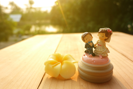 Will you marry me? Wedding Doll and Candle flower on wooden floor Stock Photo