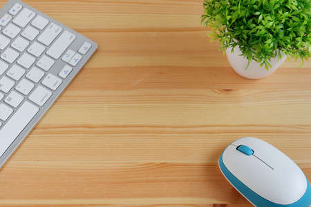 On a clean wooden desk with a white keyboard and white wireless mouse and a small vase of plants, with copy space for text and pasting products.