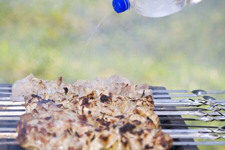 Grilled appetizing shish kebab on metal skewers Stock Photo - 3003989