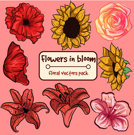 Flowers in bloom - small collection pack. Ornamental isolated vectors with floral elements. Illustration