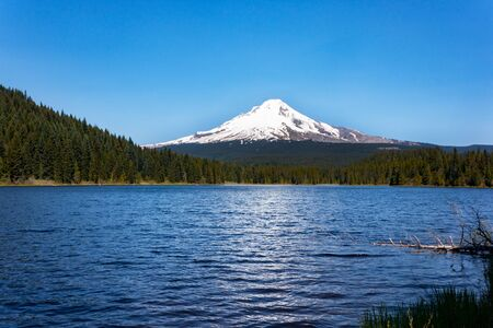 mt hood national forest: Mt. Hood from Trillium Lake near Portland, Oregon.