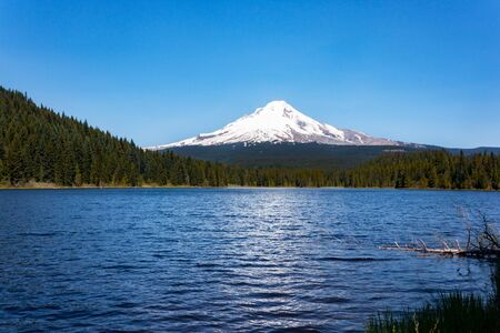 mount hood national forest: Mt. Hood from Trillium Lake near Portland, Oregon.
