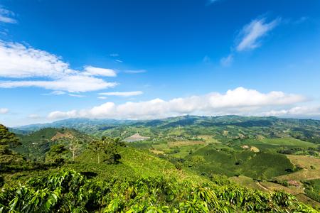 Prachtig uitzicht op de top van een berg op een koffieplantage uitkijken naar de stad van Chinchina, Colombia. Stockfoto