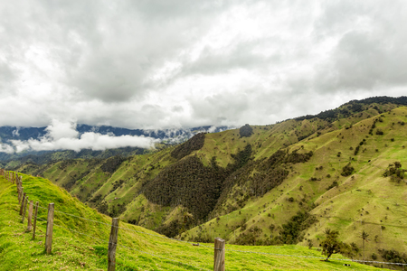 Fences disappear into the distance in the mountains outside of Salento, Colombia. Stock Photo